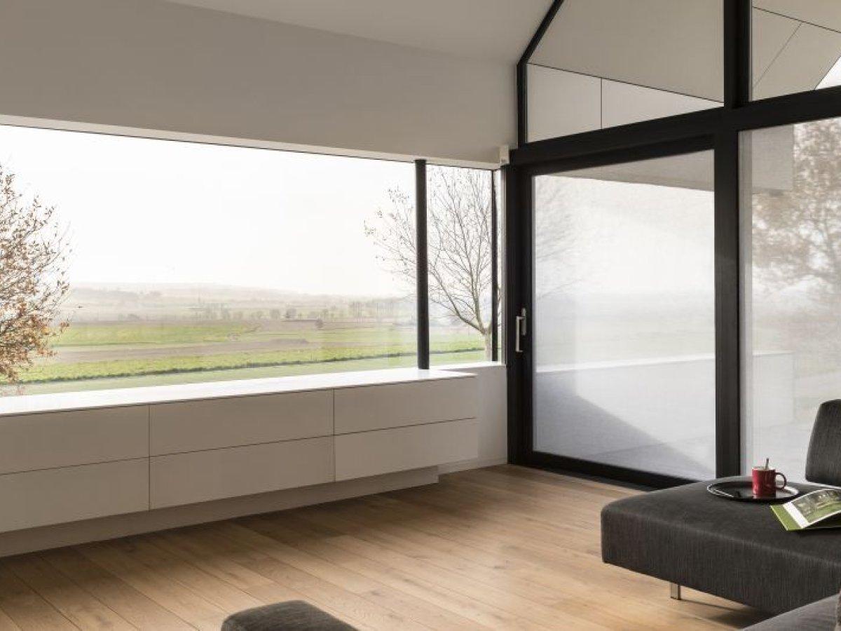 SQUID │ Innovatives Hafttextil am Fensterglas Frimey in Fulda